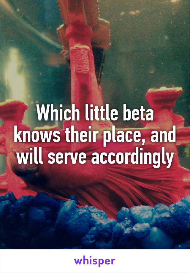 Which little beta knows their place, and will serve accordingly