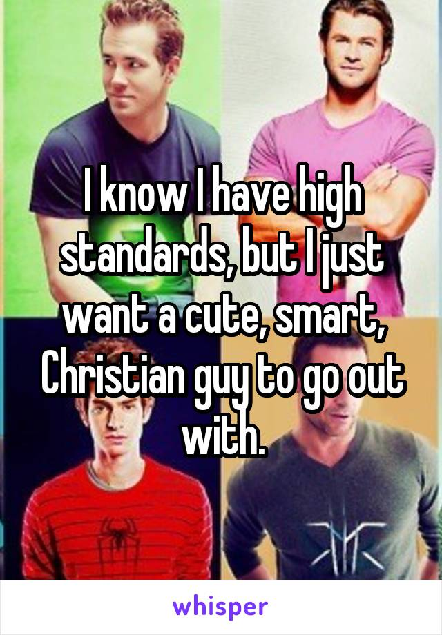 I know I have high standards, but I just want a cute, smart, Christian guy to go out with.