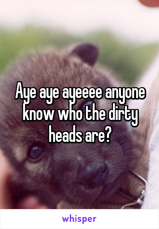 Aye aye ayeeee anyone know who the dirty heads are?
