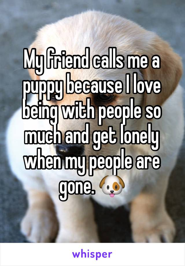 My friend calls me a puppy because I love being with people so much and get lonely when my people are gone. 🐶