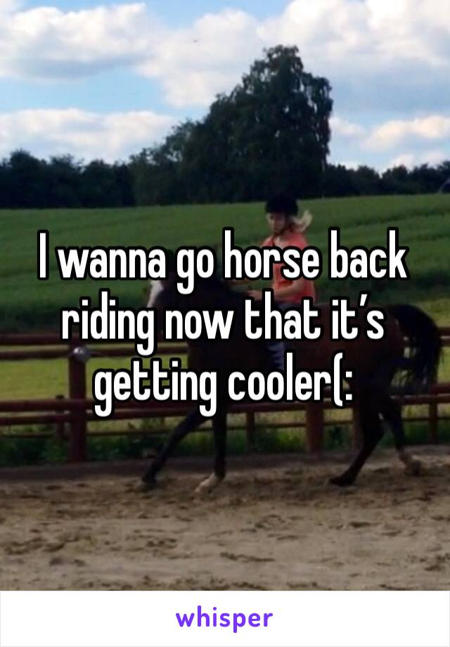 I wanna go horse back riding now that it's getting cooler(:
