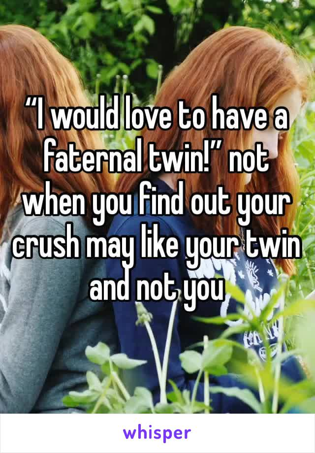 """""""I would love to have a faternal twin!"""" not when you find out your crush may like your twin and not you"""