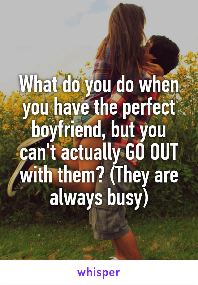What do you do when you have the perfect boyfriend, but you can't actually GO OUT with them? (They are always busy)