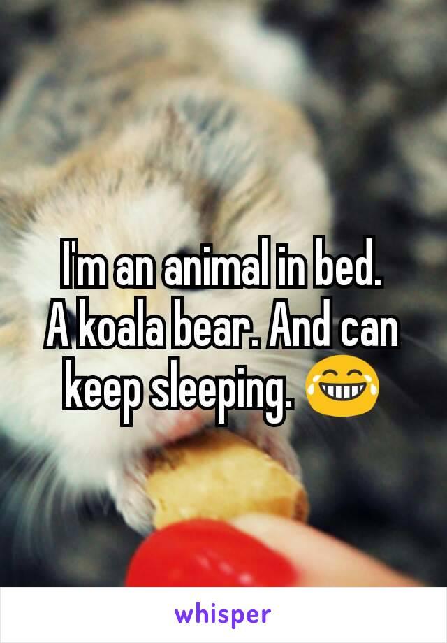 I'm an animal in bed. A koala bear. And can keep sleeping. 😂