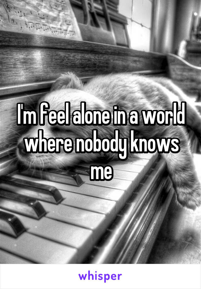 I'm feel alone in a world where nobody knows me