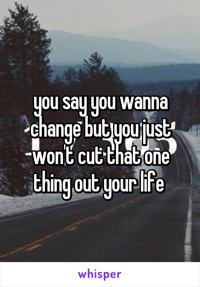 you say you wanna change but you just won't cut that one thing out your life