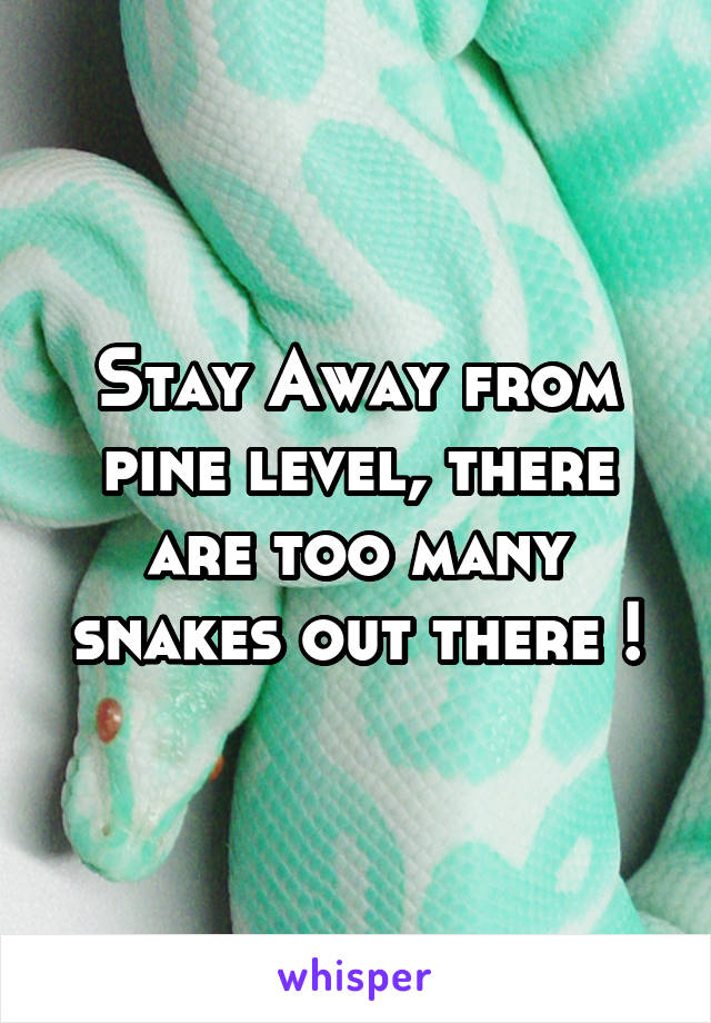 Stay Away from pine level, there are too many snakes out there !