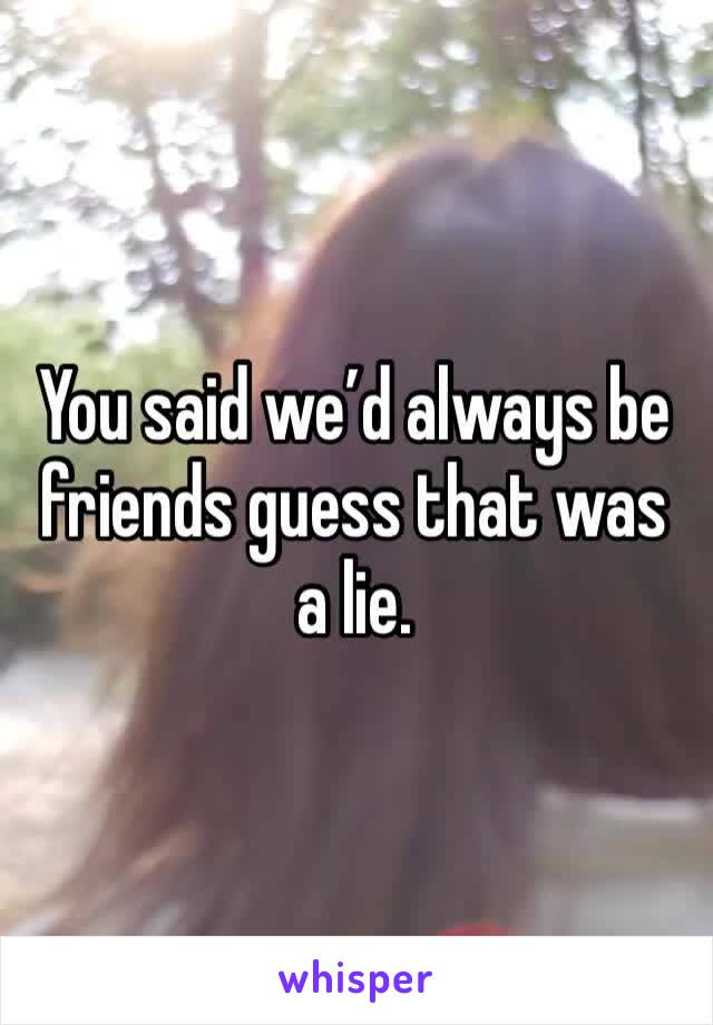 You said we'd always be friends guess that was a lie.