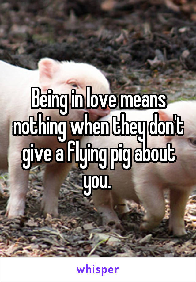 Being in love means nothing when they don't give a flying pig about you.