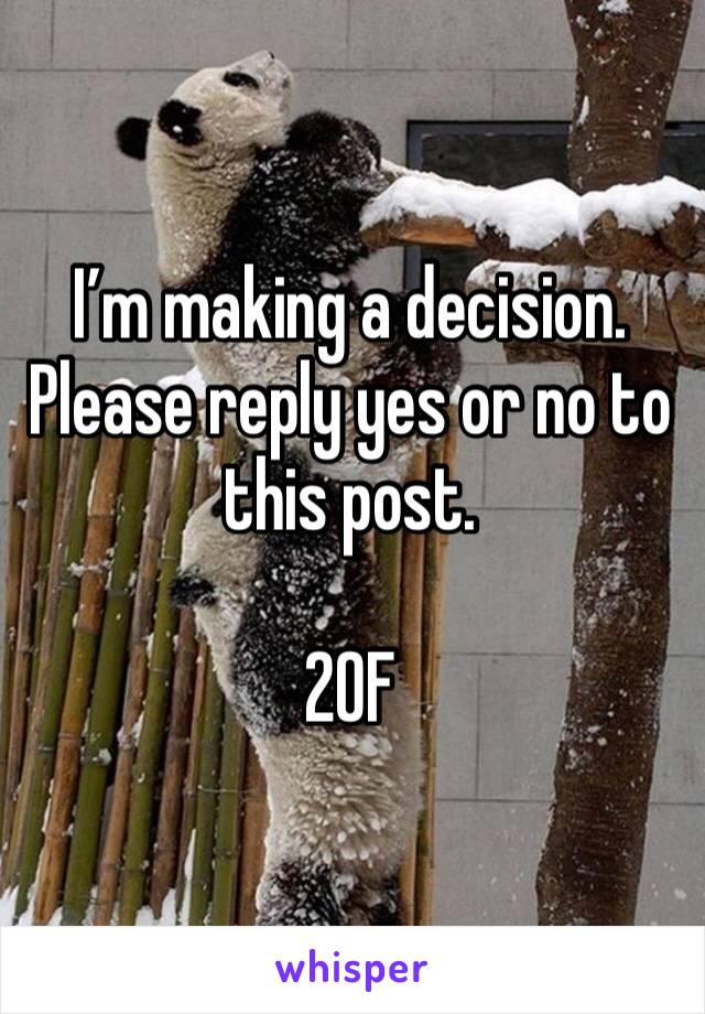 I'm making a decision. Please reply yes or no to this post.  20F