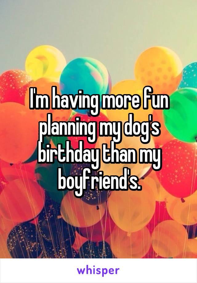 I'm having more fun planning my dog's birthday than my boyfriend's.