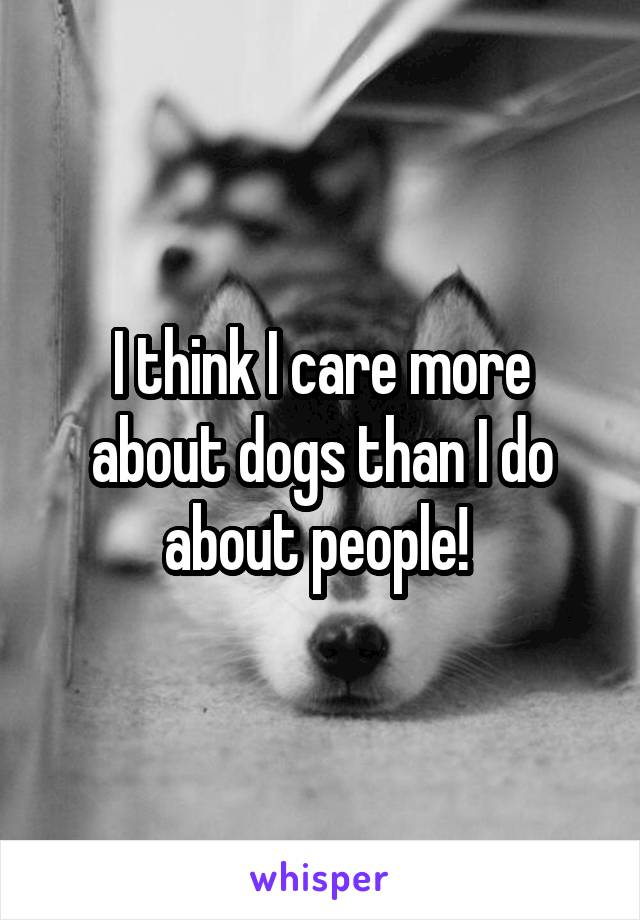 I think I care more about dogs than I do about people!