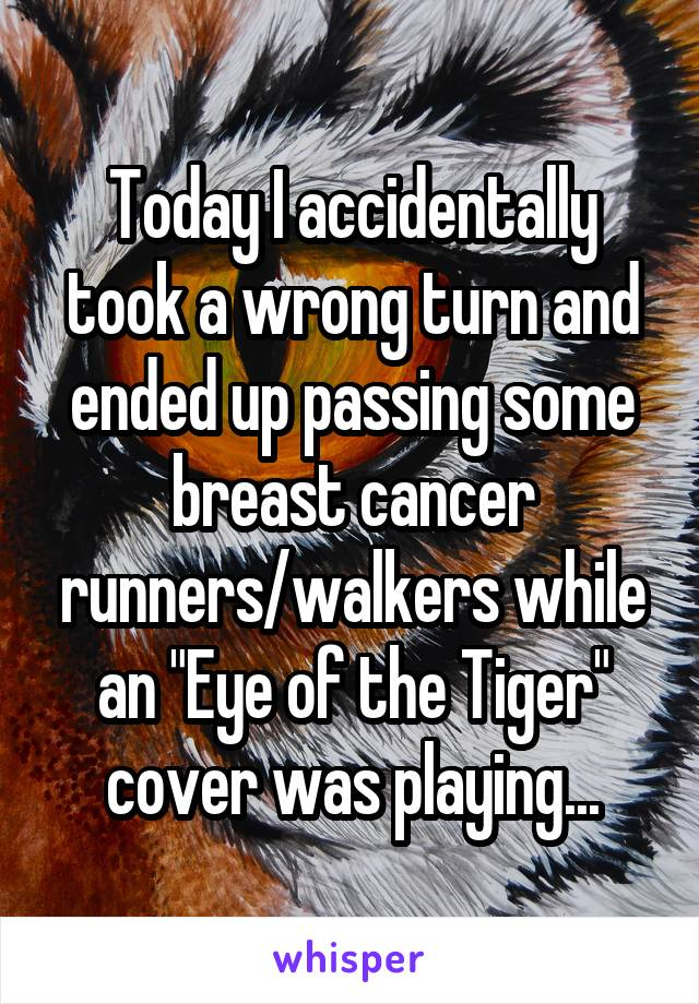 "Today I accidentally took a wrong turn and ended up passing some breast cancer runners/walkers while an ""Eye of the Tiger"" cover was playing..."