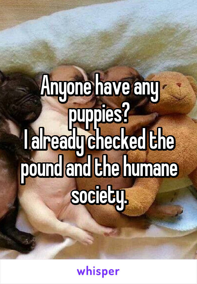 Anyone have any puppies? I already checked the pound and the humane society.