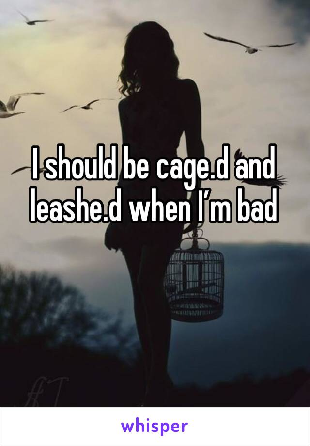 I should be cage.d and leashe.d when I'm bad