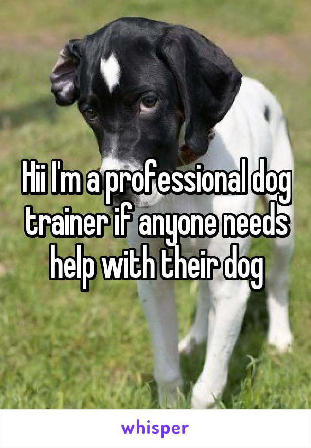 Hii I'm a professional dog trainer if anyone needs help with their dog