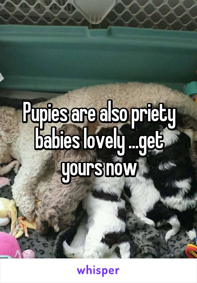 Pupies are also priety babies lovely ...get yours now