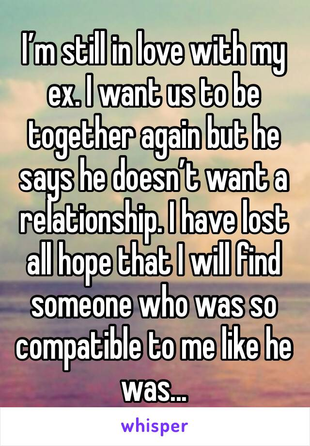 I'm still in love with my ex. I want us to be together again but he says he doesn't want a relationship. I have lost all hope that I will find someone who was so compatible to me like he was...
