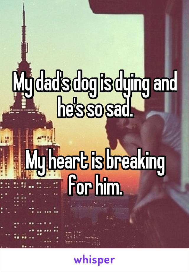 My dad's dog is dying and he's so sad.  My heart is breaking for him.