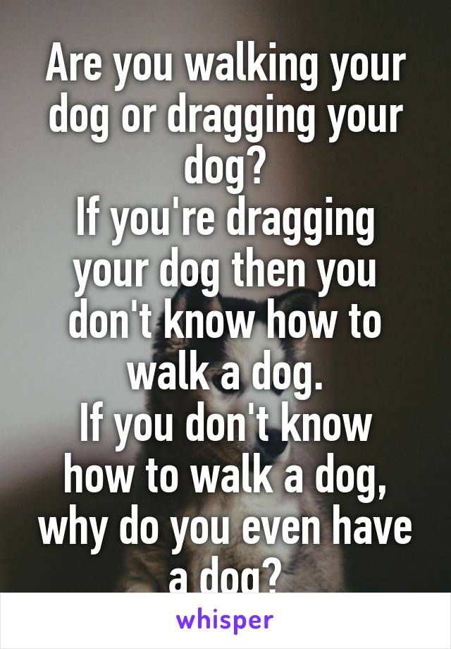 Are you walking your dog or dragging your dog? If you're dragging your dog then you don't know how to walk a dog. If you don't know how to walk a dog, why do you even have a dog?