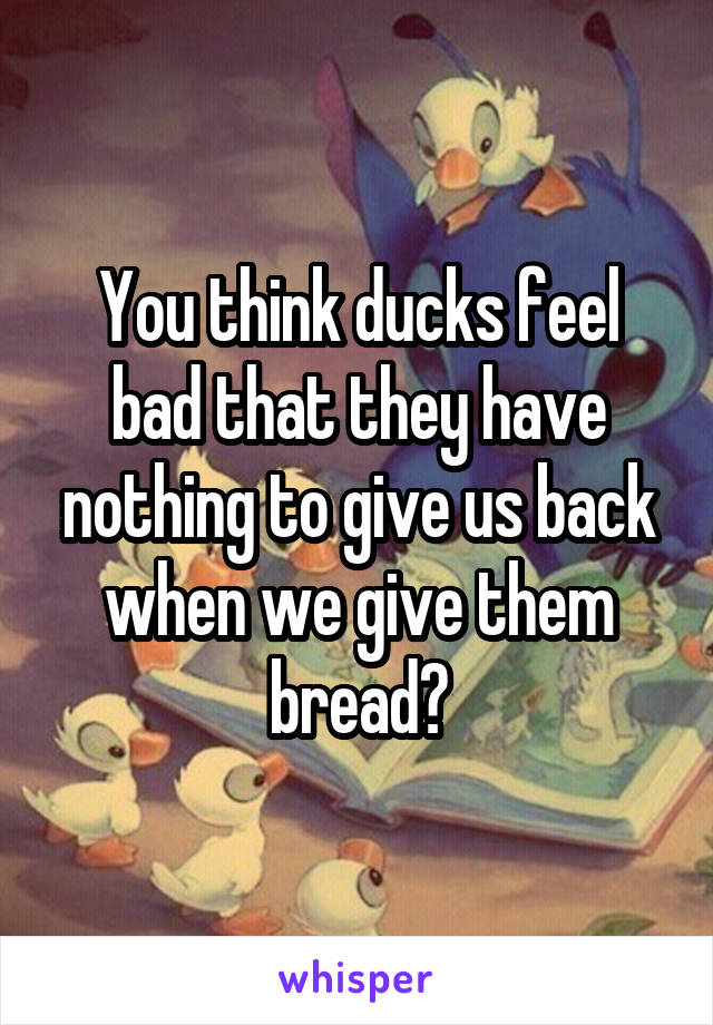 You think ducks feel bad that they have nothing to give us back when we give them bread?