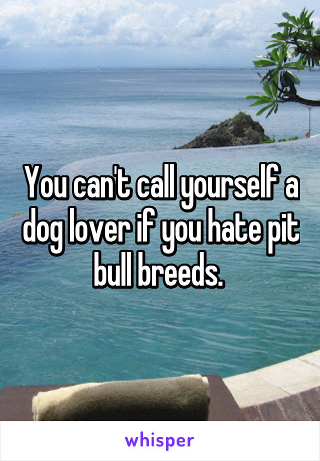 You can't call yourself a dog lover if you hate pit bull breeds.