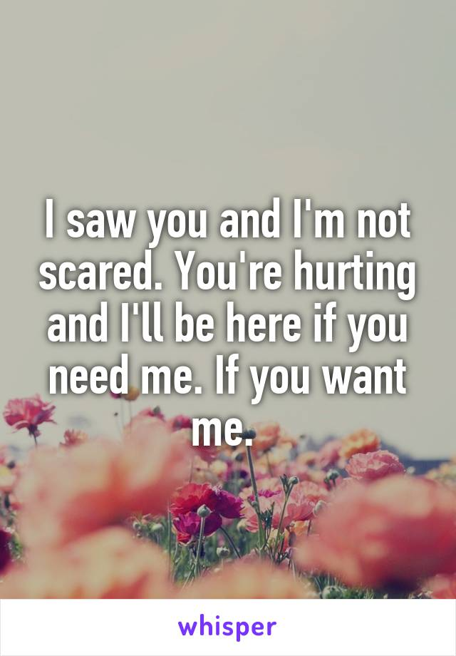I saw you and I'm not scared. You're hurting and I'll be here if you need me. If you want me.