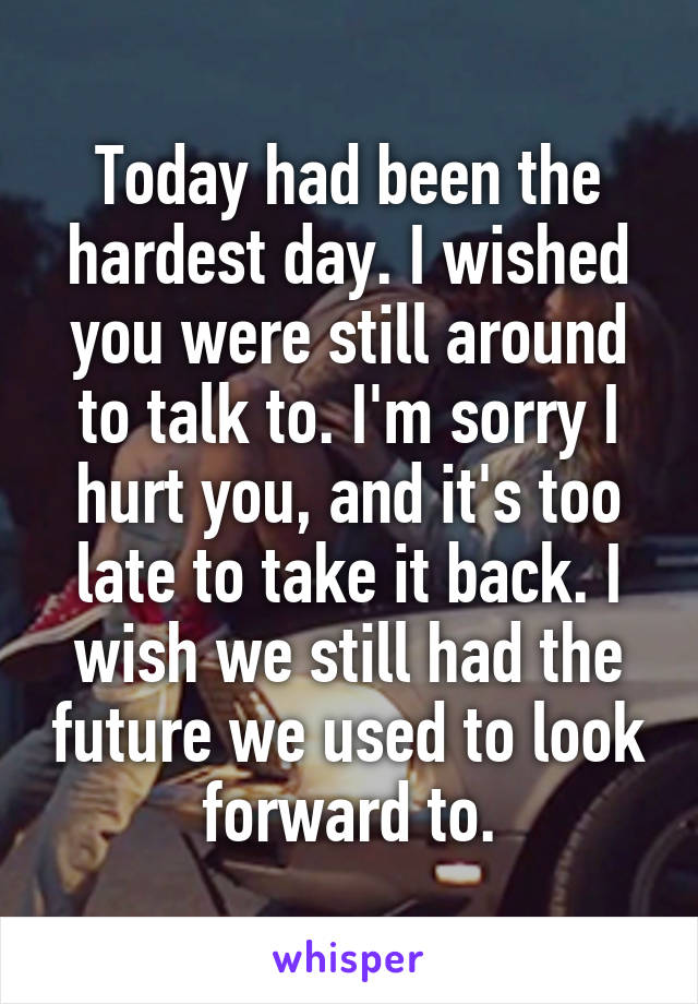 Today had been the hardest day. I wished you were still around to talk to. I'm sorry I hurt you, and it's too late to take it back. I wish we still had the future we used to look forward to.