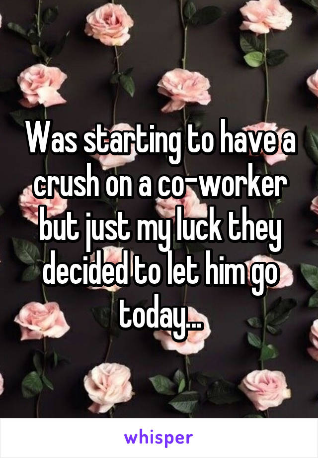 Was starting to have a crush on a co-worker but just my luck they decided to let him go today...