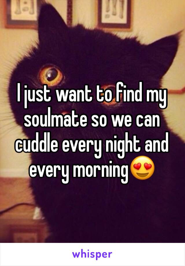 I just want to find my soulmate so we can cuddle every night and every morning😍