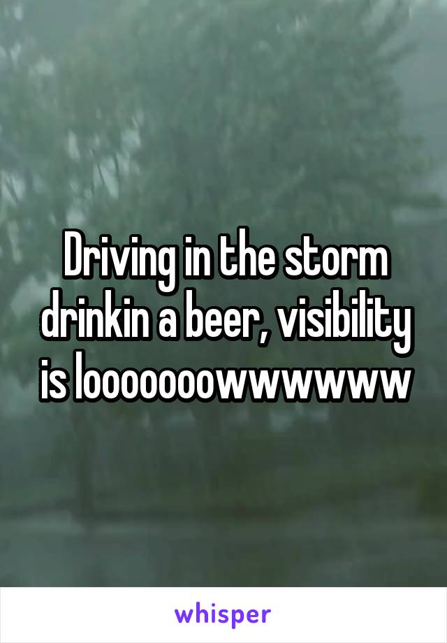 Driving in the storm drinkin a beer, visibility is looooooowwwwww