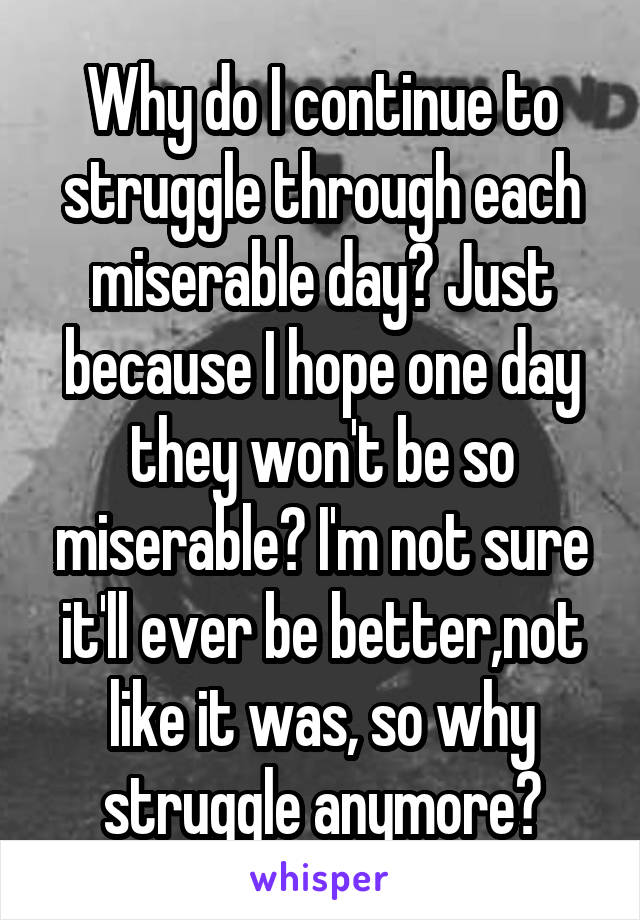Why do I continue to struggle through each miserable day? Just because I hope one day they won't be so miserable? I'm not sure it'll ever be better,not like it was, so why struggle anymore?