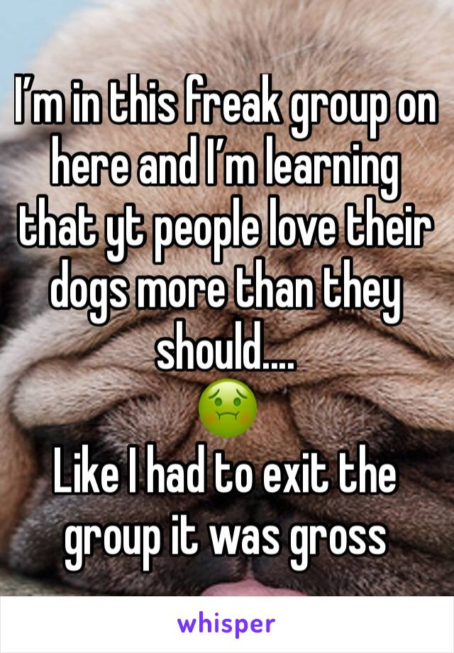 I'm in this freak group on here and I'm learning that yt people love their dogs more than they should.... 🤢 Like I had to exit the group it was gross