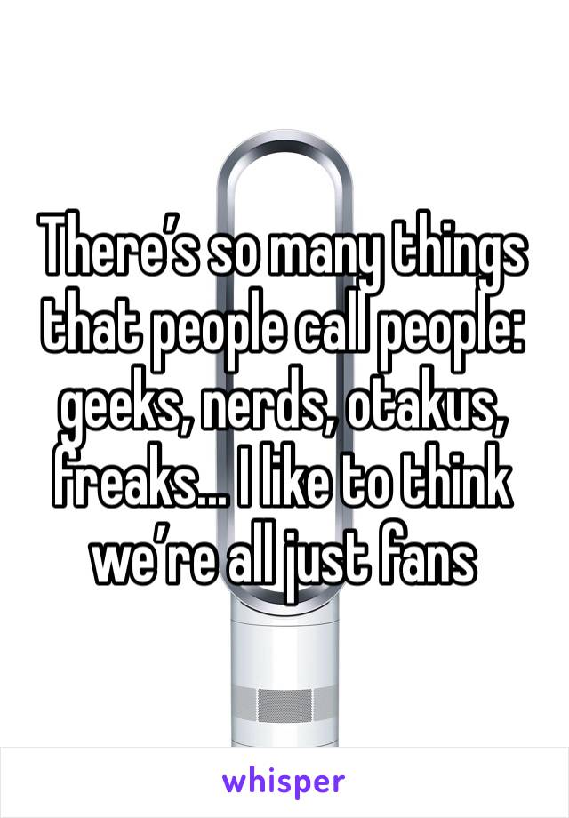 There's so many things that people call people: geeks, nerds, otakus, freaks... I like to think we're all just fans