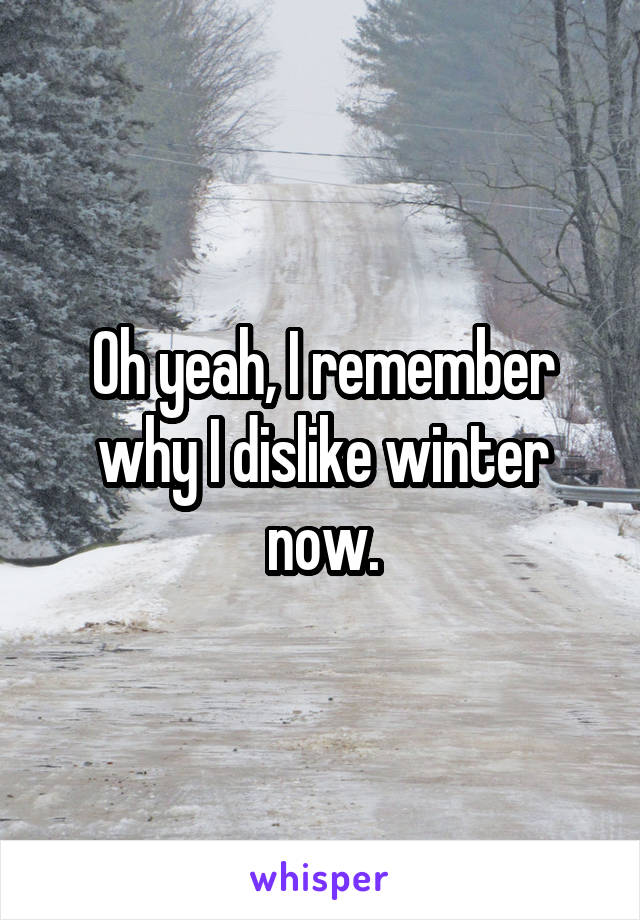 Oh yeah, I remember why I dislike winter now.
