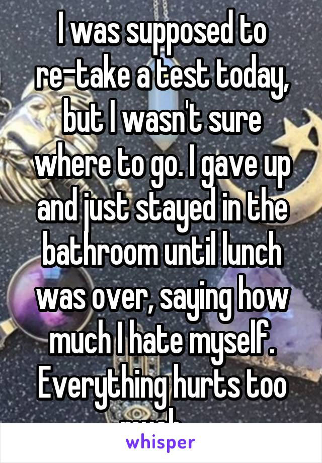 I was supposed to re-take a test today, but I wasn't sure where to go. I gave up and just stayed in the bathroom until lunch was over, saying how much I hate myself. Everything hurts too much...