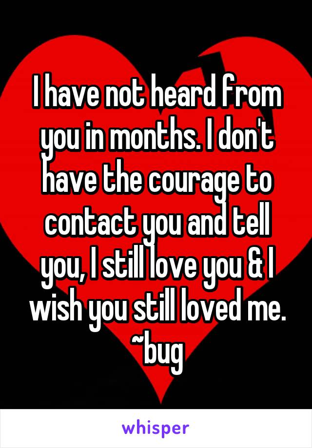 I have not heard from you in months. I don't have the courage to contact you and tell you, I still love you & I wish you still loved me. ~bug