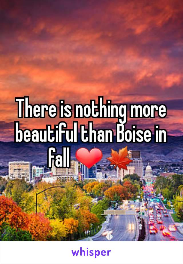 There is nothing more beautiful than Boise in fall ❤🍁