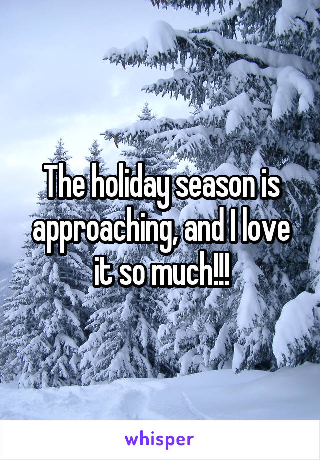 The holiday season is approaching, and I love it so much!!!