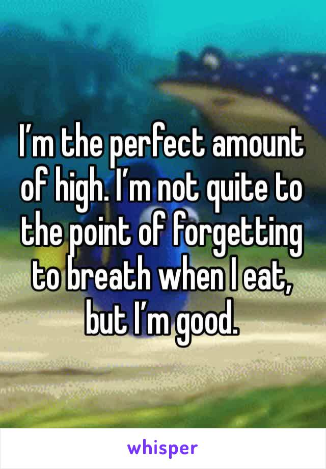 I'm the perfect amount of high. I'm not quite to the point of forgetting to breath when I eat, but I'm good.
