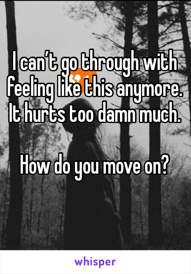 I can't go through with feeling like this anymore.  It hurts too damn much.  How do you move on?