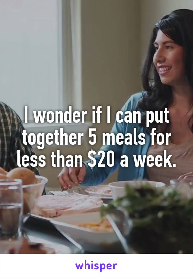 I wonder if I can put together 5 meals for less than $20 a week.
