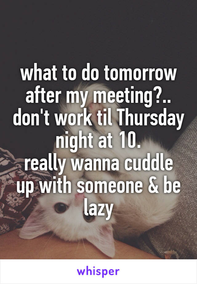 what to do tomorrow after my meeting?.. don't work til Thursday night at 10. really wanna cuddle up with someone & be lazy