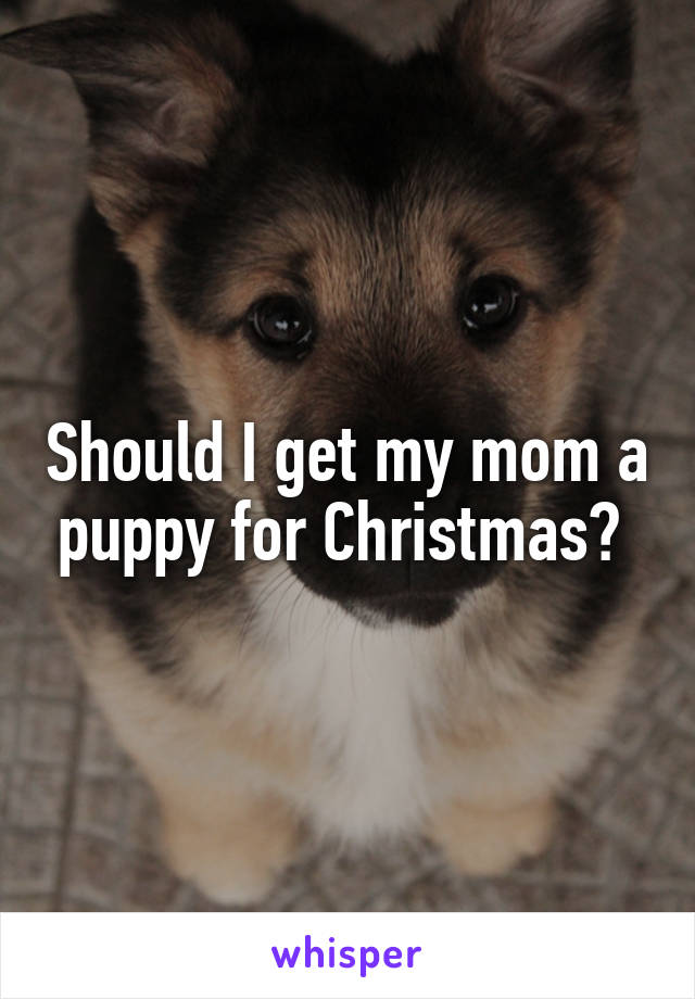 Should I get my mom a puppy for Christmas?