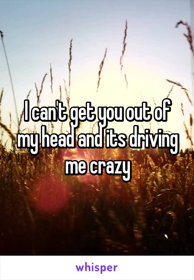 I can't get you out of my head and its driving me crazy