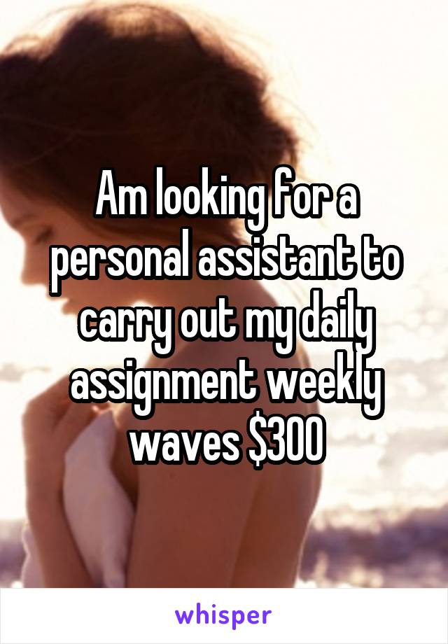 Am looking for a personal assistant to carry out my daily assignment weekly waves $300