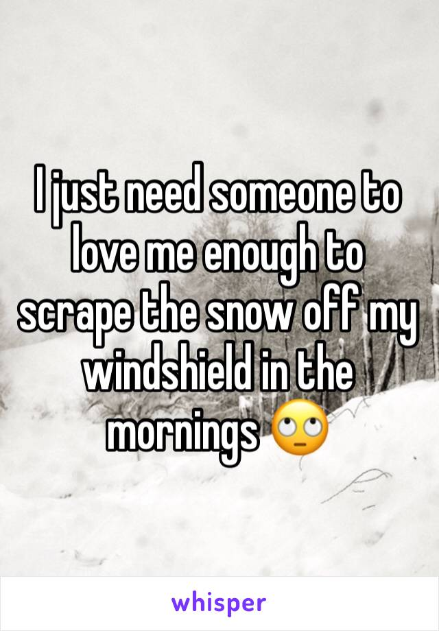 I just need someone to love me enough to scrape the snow off my windshield in the mornings 🙄