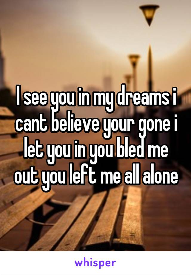 I see you in my dreams i cant believe your gone i let you in you bled me out you left me all alone