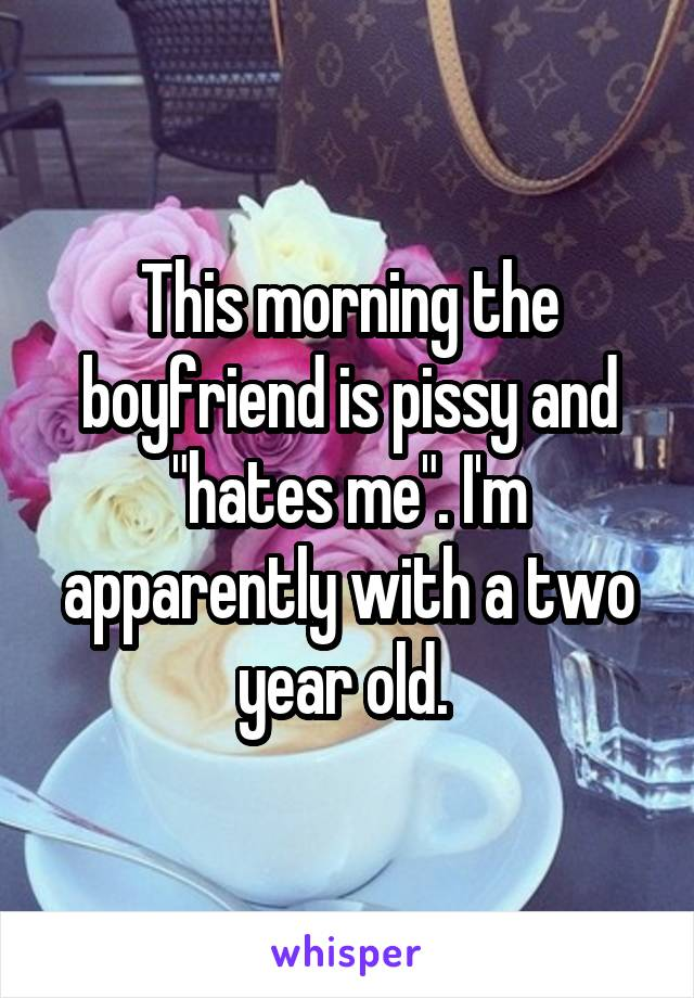 """This morning the boyfriend is pissy and """"hates me"""". I'm apparently with a two year old."""
