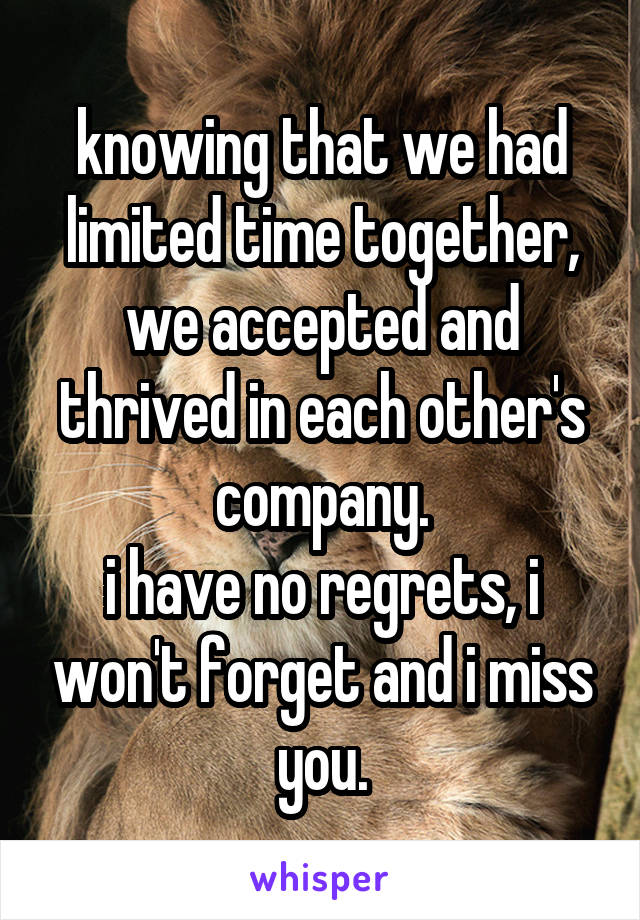 knowing that we had limited time together, we accepted and thrived in each other's company. i have no regrets, i won't forget and i miss you.